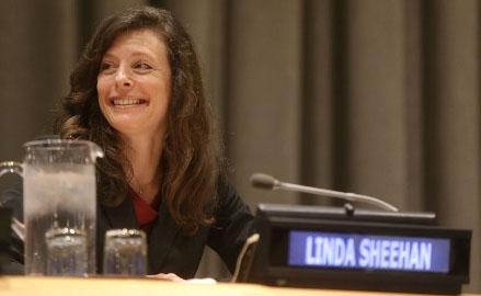 Linda Sheehan Working